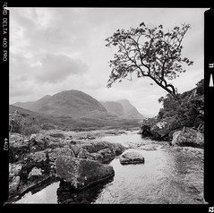 Bronica SQ-A-031-007 (michal kusz) Tags: glencoe scotland unitedkingdom highlands bronica sqa ilford delta 400 zenzanon blackandwhite bw rock lake stone hills mountain ddx epson v600 toned negative 6x6 120 film squere frame 40mm landscape monochrome tree river water