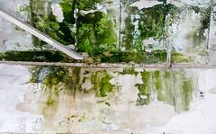 Feucht - EXPLORE (MKP-0508) Tags: lostplace kostheim verfall decay verfallen forsaken forgotten evanescence feucht schimmel grün green vert decke ceiling plafond explore inexplore cmwd cmwdgreen
