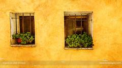 Windows in orange (ILO DESIGNS) Tags: 2017 agosto antiguo arquitectura color puebladelrincón pueblosdemadrid rural texturing ventanas architecture windows wall house rustic orange village outdoors old traditional europe spain madrid facade d3300