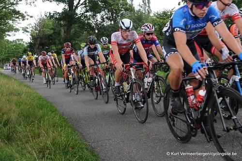 Omloop Vlaamse gewesten (235)