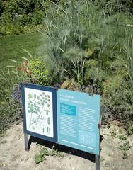 Plants and informational boards (eutouring) Tags: paris france travel jardin garden gardens plants jardindesplantes plant flowers board information essentialoils