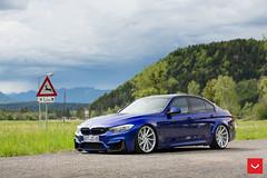 BMW M3 on Vossen CVT Wheels - © Vossen Wheels 2017 - 1041 (VossenWheels) Tags: sdobbinsvossen vossen bmw bmwm3 bmwm3aftermarketwheels bmwm3forgedwheels bmwm3vossencvt bmwm3wheels bmwm4 cvt f80m3forgedwheels f80m3wheels f80m3aftermarketwheels sdobbins samdobbins vossen2017 vossenbmwm3 vossencvt vossencvtonbmwm3 vosseneurope vossenforged vossenwheels vossenworthersee vossenwörthersee wörthersee worthersee wwwvossenwheelscom