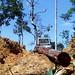Logging operations