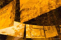 OneNightInStrasbourg-8589 (fischer_claude) Tags: 2017 claude fischer seeyou seeyouagency photo shoot reportage exposition exhibition industrial industriel culture strasbourg bar night life musique music art arty alsace 67 france concert nouveau artnouveau friends happy