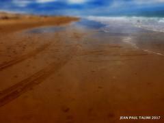 Jour de mer (JEAN PAUL TALIMI) Tags: mer aquitaine talimi texture dune jaune sable deux traces zen automne sudouest biscarrosse bleue landes bunker tempete eau piquets marche exterieur