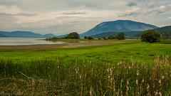 Shuswap Lake, near Salmon Arm. (kensparksphoto) Tags: shuswaplake sabnes bird sanctuary mount ida britishcolumbia wetland