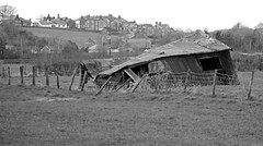 Shed (and should be) Buried. (Gerry Hat Trick) Tags: shed abandoned collapsed ruin rusty walking walk hiking hike cumbria arnside black white blackwhite mono monochrome panasonic45200mmf456ois
