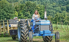blue (albyn.davis) Tags: tractor farm country people woman colorful green blue vibrant bright vivid working massachusetts newengland trees nature