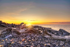 Z01_3604s (savillent) Tags: sun sunset landscape photography beach arctic north driftwood skies water waterscape climate tuktoyaktuk nwt canada travel september 2017
