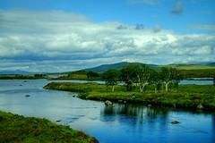 Killarney National Park ( Ireland ) (linwujin) Tags: ireland nationalpark nature landscape lake blue sky cloud tree sunshine fujifilm xt1 xf1655