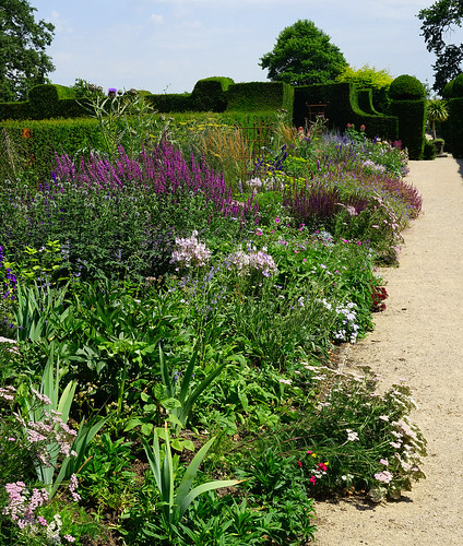 Herbaceous Border at Hole Park