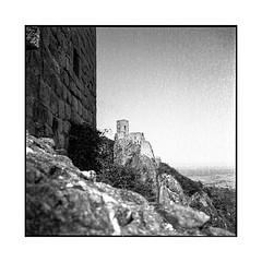 3 castles • 4 • alsace, france • 2017 (lem's) Tags: castle tower ruin 3 chateaux ruine tour alsace minolta autocord