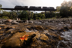 Fall is Here (Brandon Townley) Tags: trains railroad ns norfolksouthern fall newyork westfield bridge trestle backlit water tree nature intermodal light leaf river