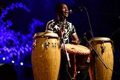 Sanou Mandingue IV (glarigno) Tags: music musique musician musicians musicien musiciens africain africaine african africlap personnes percussions people toulouse france europe europa couleurs colors couleur color d610 sanou mandingue drums