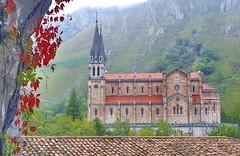 Catedral Covadonga (Jabi Rollán) Tags: covadonga asturias canon 5d javierrollán templo temple tejado rosa flor luz edificio arquitectura monasterio iglesia