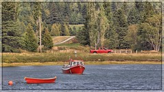 Lucien Loves Red (Note-ables by Lynn) Tags: boat water bay quebec bicparc red dinghy