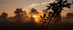 IMG_0575 (JJ_1968) Tags: limburg summer sunshine autumn foggy