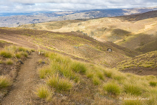 4WD to Young Australian Waterwheel & Carricktown, Central Otago, New Zealand
