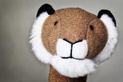 Macro Mondays : Zodiac (erichudson78) Tags: canonef100mmf28lmacroisusm macro macromondays zodiac canoneos6d lion
