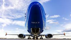 Boeing 737 Max-8 (RaulCano82) Tags: max boeing boeing737 max8 737max airplane jet swa swapic southwestair raulcano canon 80d aviation airliner khou hou houston htx htown houstontx houstontexas houstonhobby texas tx blue avgeek plane leap closeup ultrawide 1018mm