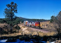 Eastbound Santa Fe train east of Williams Junction, Arizona (rolfstumpf) Tags: usa arizona williams kaibab atsf warbonnet snow pine train railway railroad emd sd75m