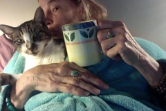 Home is Where Your Cat Is (Room With A View) Tags: photobooth me wiki tea mug cat selfportrait