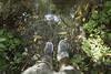 pisgah 9-26-17-11 (jimlustgarten) Tags: pisgah lustgarten waterfall