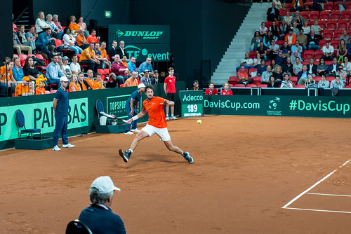Davis Cup Tennis: Robin Haase (NL)