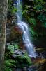 Y + E Evie (VernsPics) Tags: 2017 lawson bluemountains nsw waterfall waterfallcircuit ye evie tripodless somecrazy missingthehumanelement wink