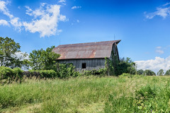 Rusty Roof (gabi-h) Tags: barn architecture rural rustic farm sky blue clouds field grass gabih princeedwardcounty trees landscape