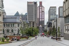 promenade fleuve-montagne by eva blue 06 (The Montreal Buzz) Tags: promenadefleuvemontagne mcgill mctavish montreal evablue