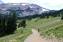 Hiker (Bella Lisa) Tags: mountrainiernationalpark sourdoughmountains washington sunrisevisitorcenter degepeak mtrainier emmonsvista curlyeverlasting wildflowers wilderness nationalpark washingtonstate sunsetpoint hiking emmonsglacierevergreens pines pinetrees