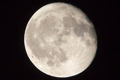 20170907-LRC40198.jpg (ellarsee) Tags: 2x moon tamronadaptall30028 14x flickr astrophotography felton california unitedstates us