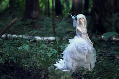 IMG_1172 (~ko4erishka) Tags: bjd doll fairyland feeple60 moe cygne