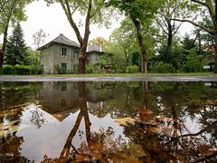 Wekerle, after the rain (un2112) Tags: laowa laowa75 wekerle budapest hungary rain reflection august gx80