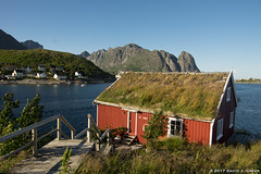 Sod Roof (David J. Greer) Tags: norway norwegian sea adventure explore landscape rubicon3 sailtrainexplore sailing summer reine lofotens house sod roof