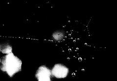 Universi paralleli (gianclaudio.curia) Tags: bianconero blackwhite pellicola kodak kodaktrix olympus om2n ornano sviluppo minimalismo monocromo cartafotografica ilfordmultligradeivrcdeluxe cameraoscura