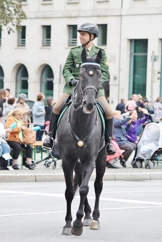the world 39 s best photos of horse and polizei flickr hive mind. Black Bedroom Furniture Sets. Home Design Ideas