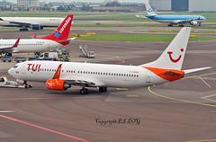 Boeing 737-86J C-GOWG Sunwing (Tuifly) (EI-DTG) Tags: planespotting aircraftspotting schipol ams eham amsterdam 08aug2017 boeing boeing737 b737 babyboeing busstopjet tuifly goxla miamiair cgowg sunwing