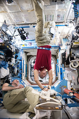 CPR in space (astro_paolo) Tags: medical cpr space astronauts vitamission health emergency