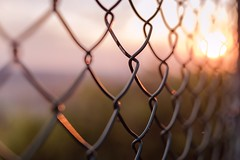 Yes to this (Tracey Rennie) Tags: fence sunset light pattern 52weekchallenge smoky sun entwined chain link