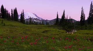 Sunrise in the Mountains (Mt Rainier NP, WA)