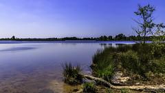 Stappersven (cstevens2) Tags: kalmthout kalmthoutseheide stappersven water grensparkdezoom fen naturereserve nationalpark natuurreservaat ven belgium belgië