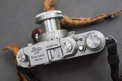 Leica IIIa top (1936) (Arne Kuilman) Tags: leica iiia leicaiiia 1936 ernstleitz wetzlar madeingermany prewar handmade camera 135 7artisans fall kleinbeeld original elmar 50mmf28 1956