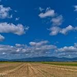 Sur la route des Côtes d'Arey, vue sur le Pilat. thumbnail