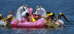 The Flotilla (swong95765) Tags: inflatables people float floating river water