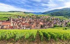 Riquewihr (Voyages Lambert) Tags: ribeauville vosges colmar blue cultures architecture nature ruralscene riquewihr alsace france europe vine hill valley roof church tower village town