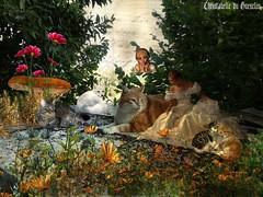 PITCHOUNET EN BONNE COMPAGNIE !!!!!!!!!!!!!!!! (christabelle12300( très très peu prèsente !)) Tags: artdigital pitchounet renard femme fée champignon fleurs chat cats creativephotography netartii shockofthenew