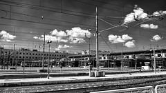 Italy 2017 (hermitsmoores) Tags: 2hosdoitaly italy roma rome blackwhite bw d800 fullframe fx nikkor2870mmf28 nikon nikond800 vacation