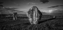 'The Avenue at Dusk'             (see description) (Milesofgadgets ) Tags: westkennetavenue avebury sigma35mmf14dghsmart pentaxk3ii petermiles peter miles petermiles neolithic